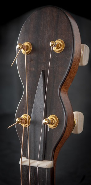 forster-tenor-guitar-head-2