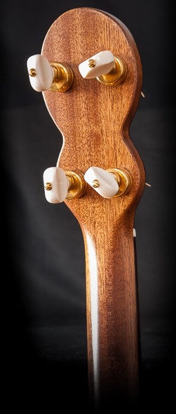 forster-tenor-guitar-rear-head