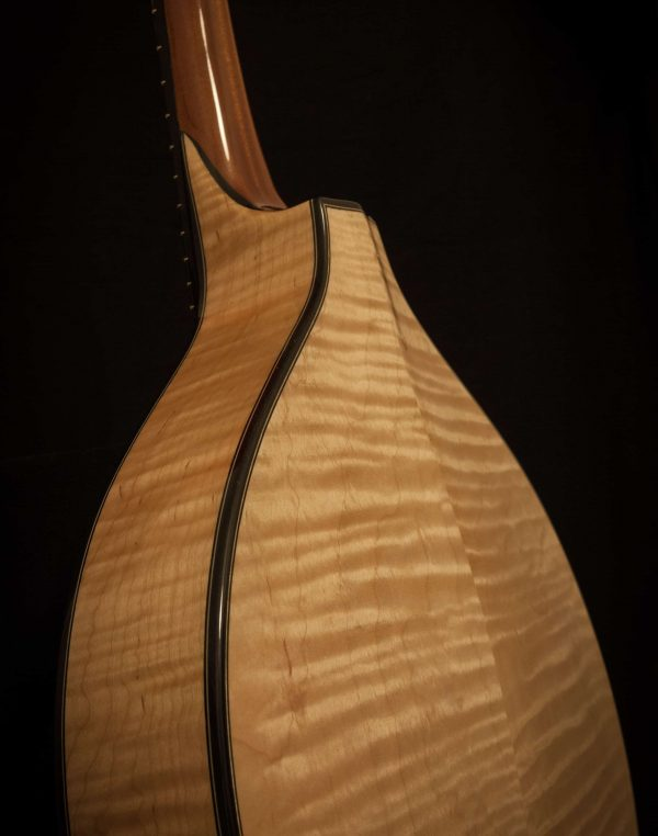 Celtic F mandolin back and ribs