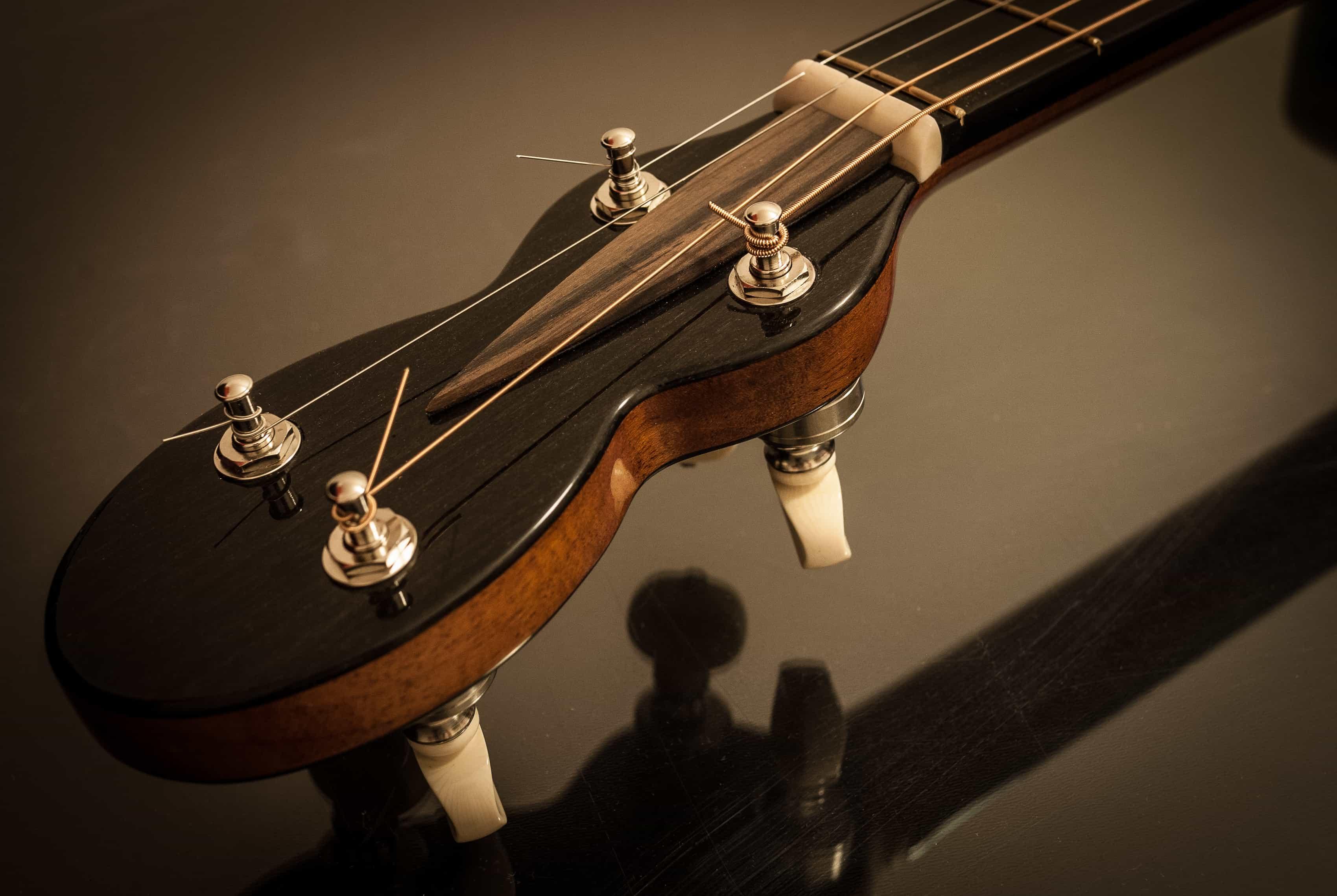 banjo head tenor guitar