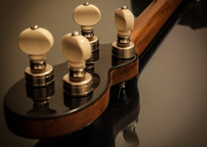 Guitar bouzouki-4