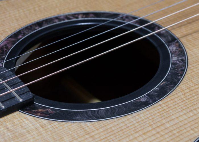 Session King tenor guitar 22-5