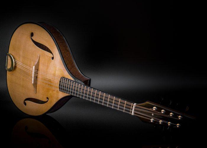 sapele mandolin front