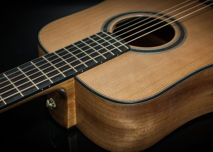 New Session King 6 string guitar