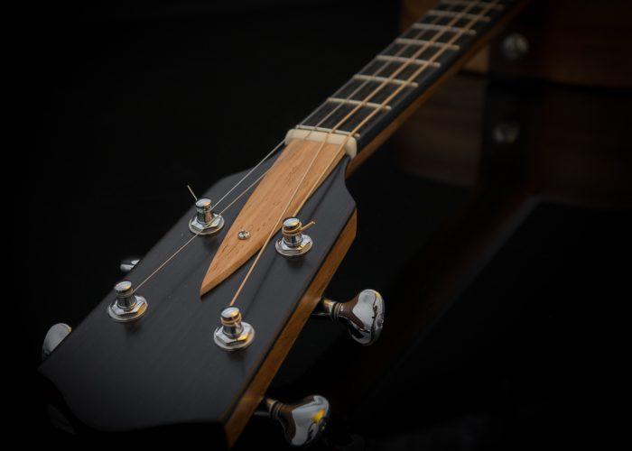 Parlour King tenor guitar-2