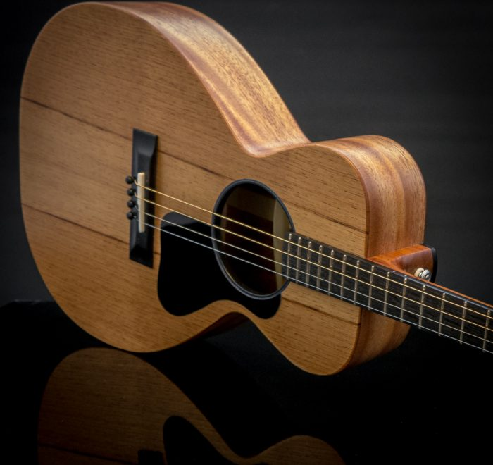 Parlour King Tenor Guitar